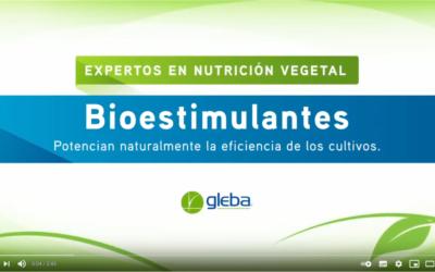 Bioestimulantes. Potencian naturalmente la eficiencia de los cultivos.