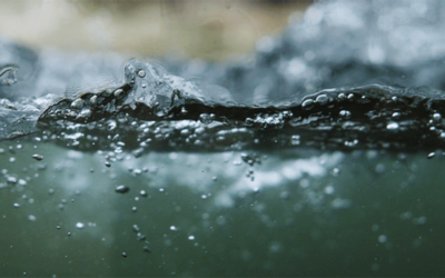 Calidad del agua y su impacto en la eficiencia de los insecticidas